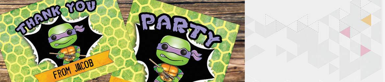 Turtle Superheroes