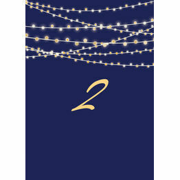 Navy & Gold Fairy Lights Table Number