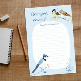 Winter Birds New Years Resolutions Printable