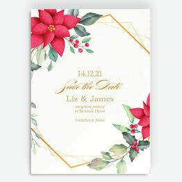 Poinsettia Flowers Winter Save the Date
