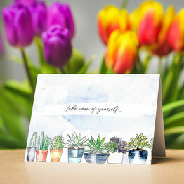 Pack of 10 Succulents Note Cards
