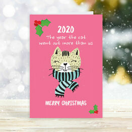 Pack of 10 \'Cat Went Out More Than Us 2020\' Christmas Cards