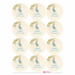 Peter Rabbit Beatrix Potter Stickers - Sheet of 12