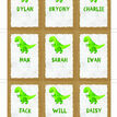 Dinosaur Themed Name Cards - Set of 9 additional 2
