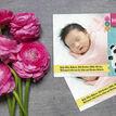 Panda Bear Photo Birth Announcement Card additional 2