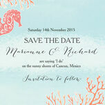 Tropical Coral Save the Date additional 4