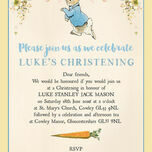 Peter Rabbit Christening / Baptism Invitation additional 4