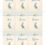 Beatrix Potter Peter Rabbit Name Cards - Set of 9 additional 2