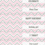 Chevron DIY Straw Flags additional 3