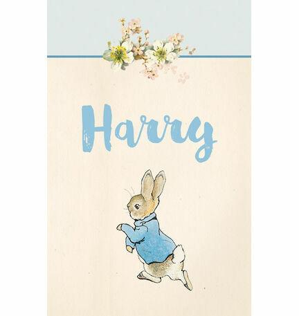 Beatrix Potter Peter Rabbit Name Cards - Set of 9
