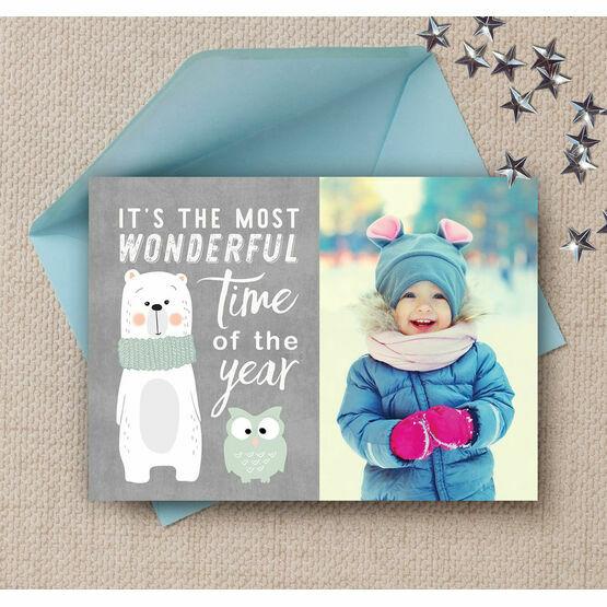 Cute Bear & Owl Photo Christmas Card