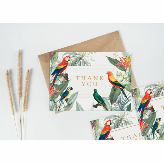 Pack of 10 Tropical Birds Thank You Note Cards