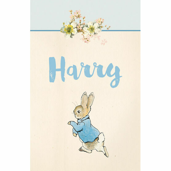 Beatrix Potter Peter Rabbit Name Cards - Set of 9
